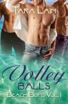 VolleyBalls_ByTaraLain-453x680