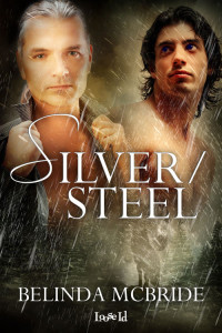 BM_SilverSteel_coverin