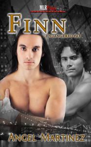 Finn_432(1)