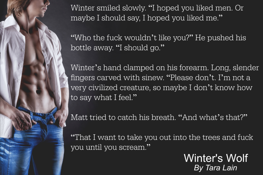 Winter's Wolf Teaser 1